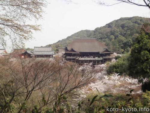 泰産寺から見た清水寺