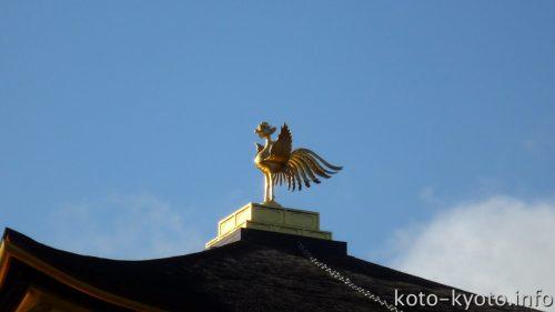 金色に輝く鳳凰